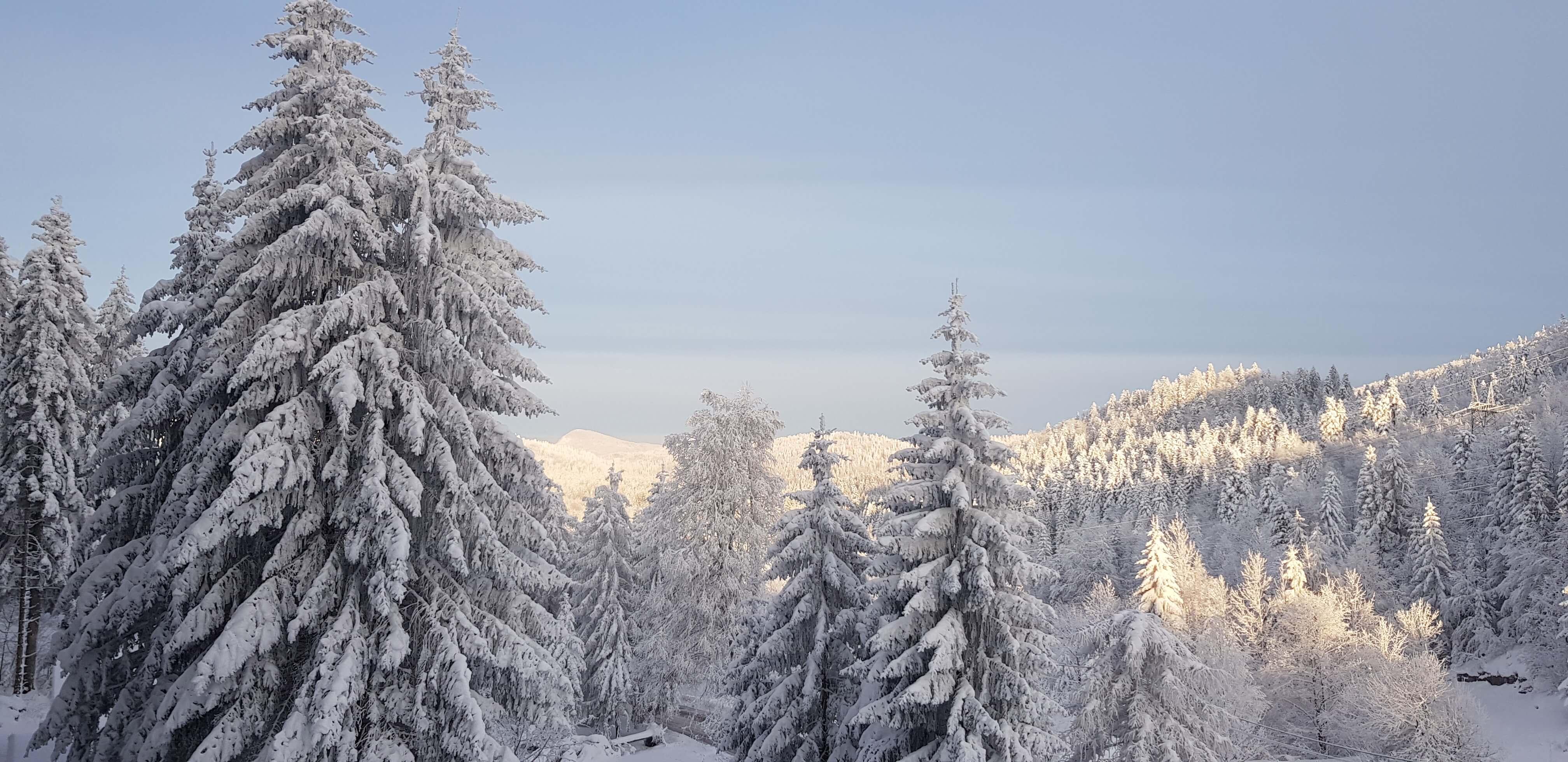 Gorska Bajka winter